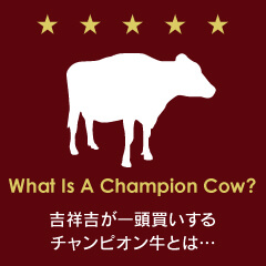 Buy the whole champion Kobe cattle